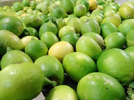 Immagine di 9kg limoni di Sicilia